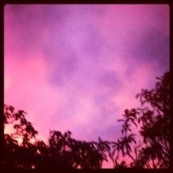 Raspberry sky