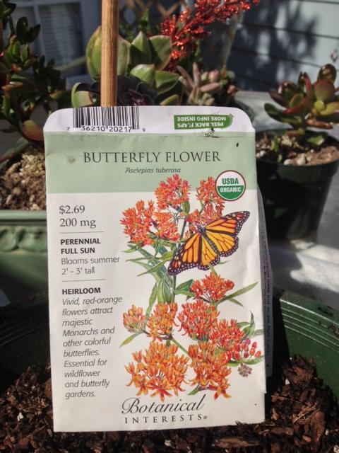 Milkweed seed packet