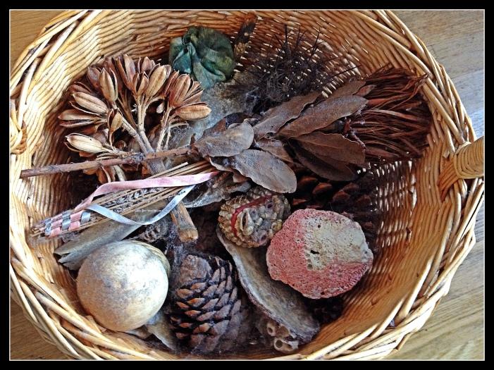 Inside a basket of nature's wonders