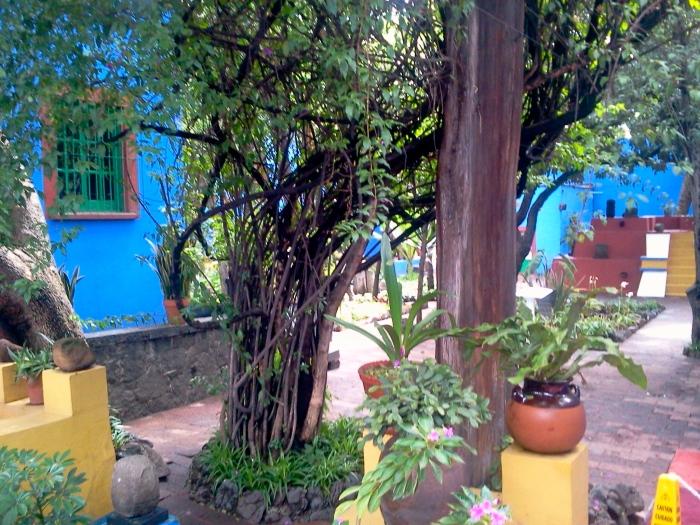 Fida Kala's Garden