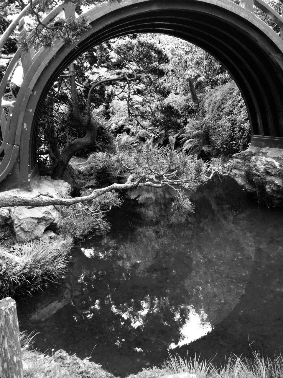 Phoneography: Japanese Tea Garden Tells a Story of Harmony ...