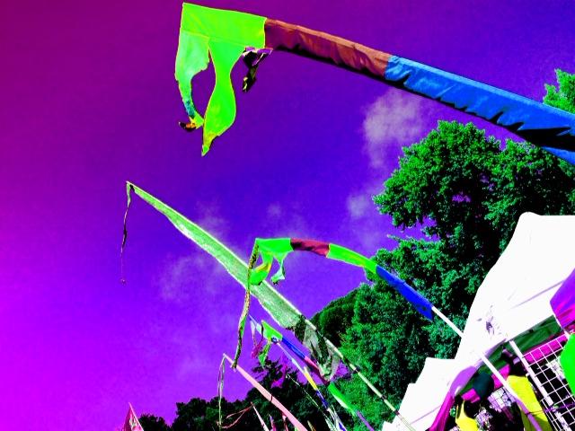 One world festival, El Cerrito
