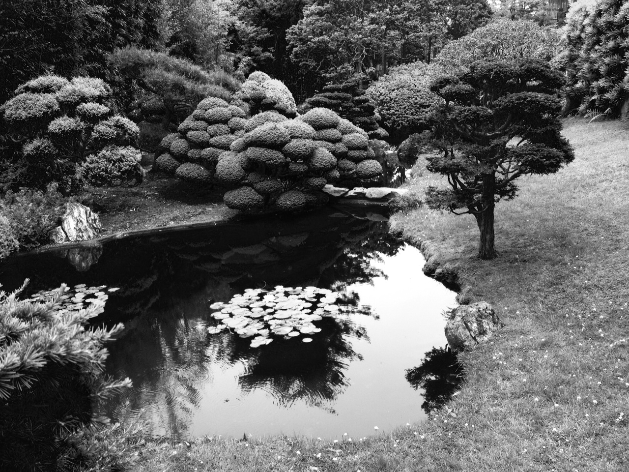 phoneography japanese tea garden tells a story of harmony in black and white light words. Black Bedroom Furniture Sets. Home Design Ideas