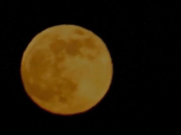 Summer solstice Full Moon 2013