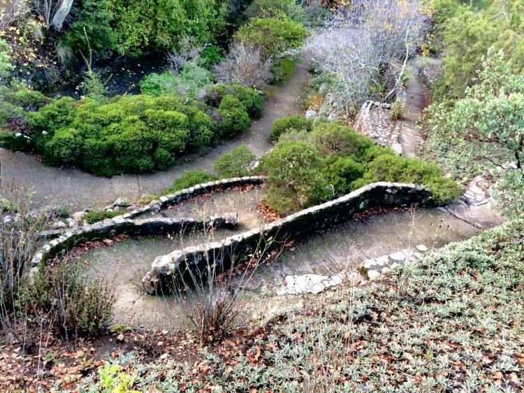 Path in Native Plant Garden