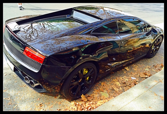 Lamborghini on 4th Streer