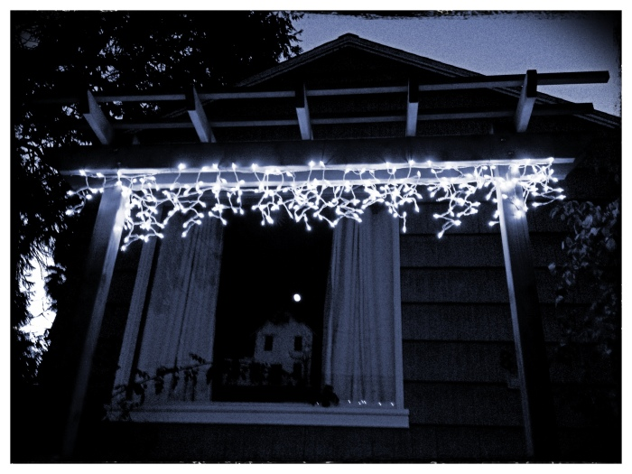 Christmas lights and Full Moon reflected in window