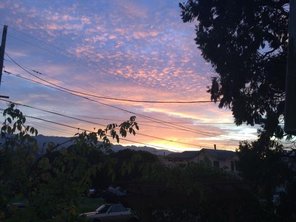 Purple  or violet sunrise