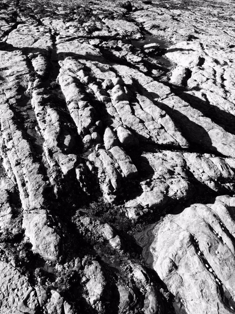 Pt Lobos or landing strip