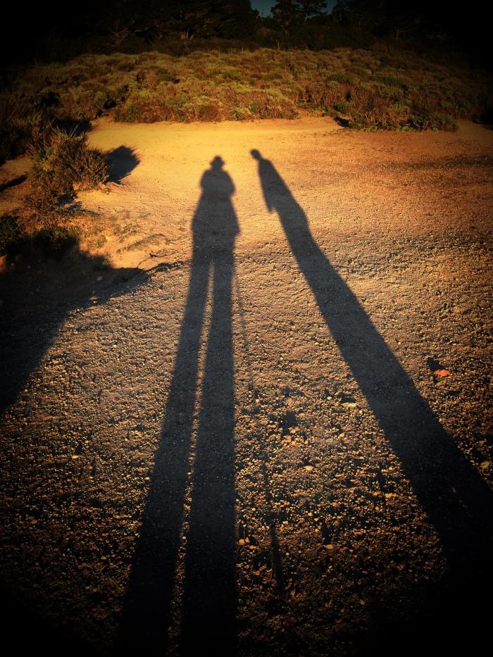 Long shadows New Years Day Pt. Lobos
