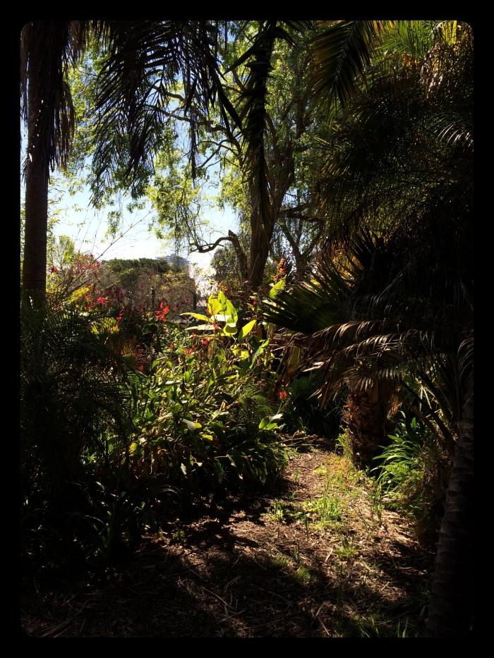 1-City Garden