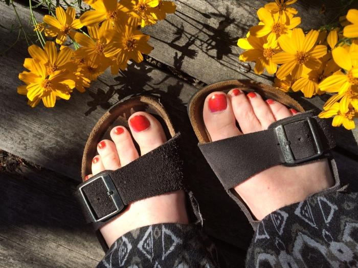 Pair of sandels