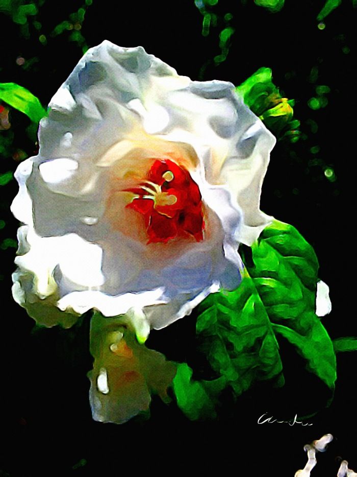 2-Hibiscus Painted with Burshstroks
