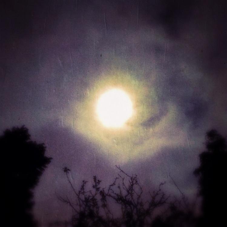 4-Moon at 4:20 this Morning Histaminic