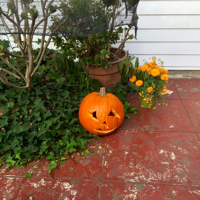 Sad Pumpkin left over