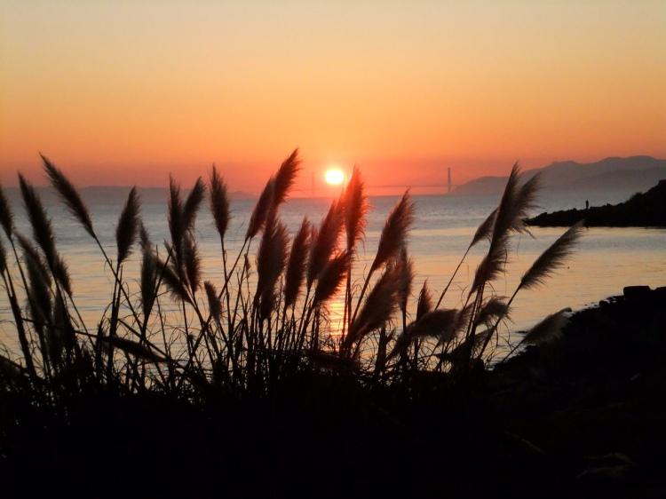 Solstice Sunset 2011