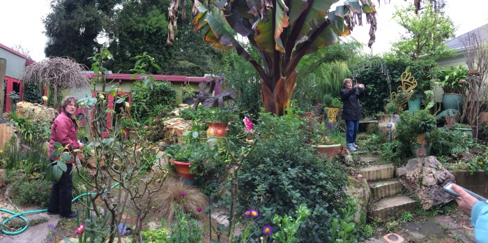 Students Photographing the Magical Garden