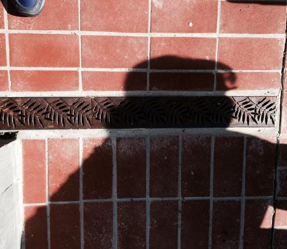 An Odd Shadow