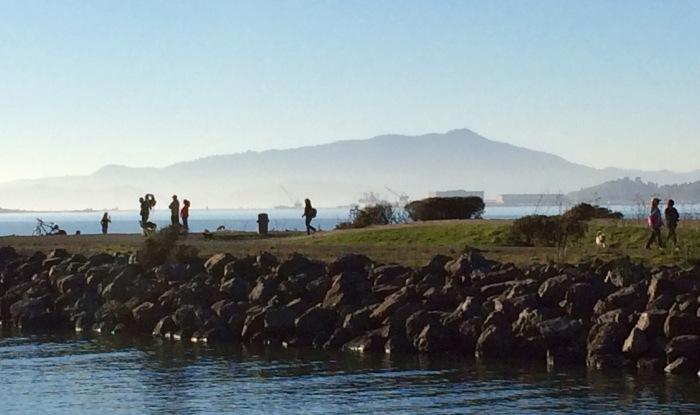 SF Bay Mount Toun