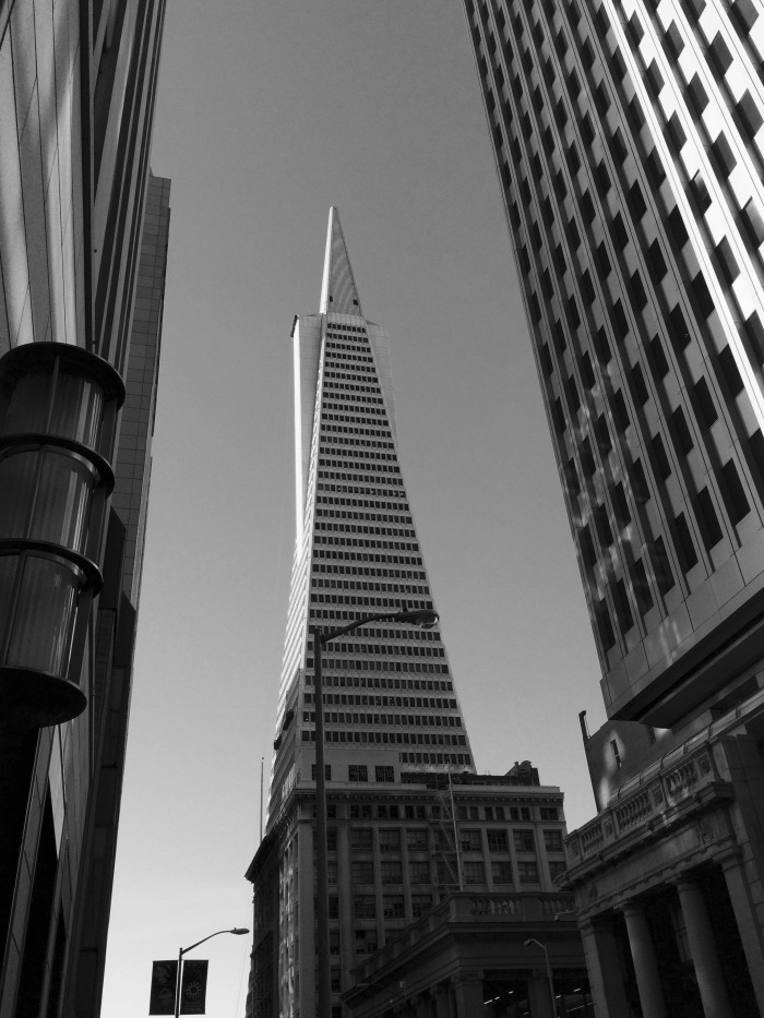Transamerica Building from Montgomery St.