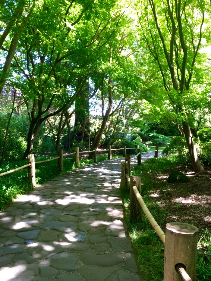 Path at Japanese Tea Garden