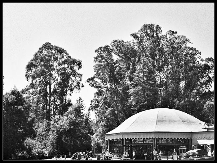 Tilden Merry-Go-Round Beneath the trees