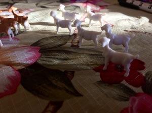 Goats on a journey