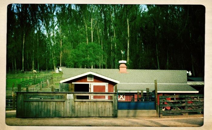 Tilden's Little Farm