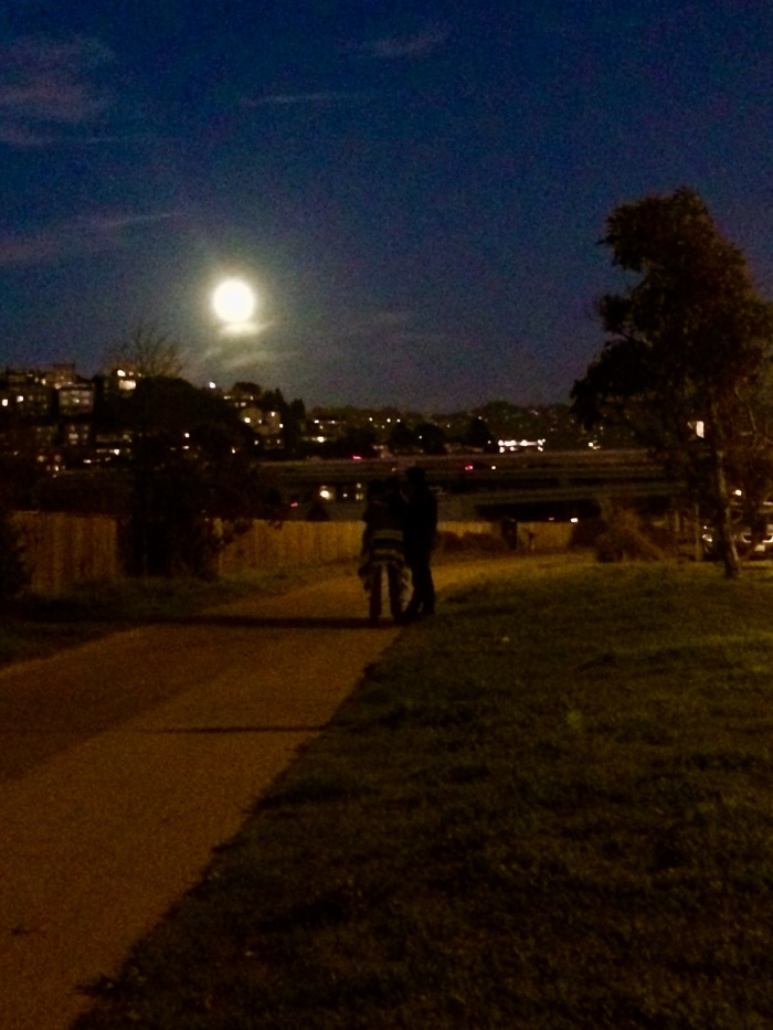 Path to Moon watching iPhone