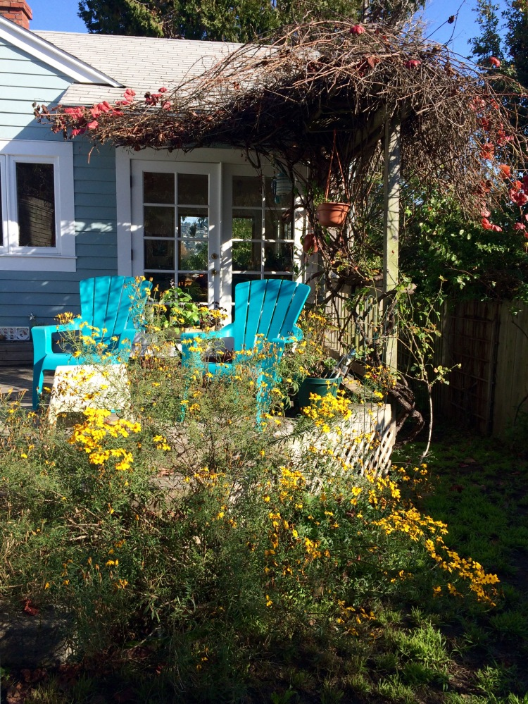 My Blue Chairs