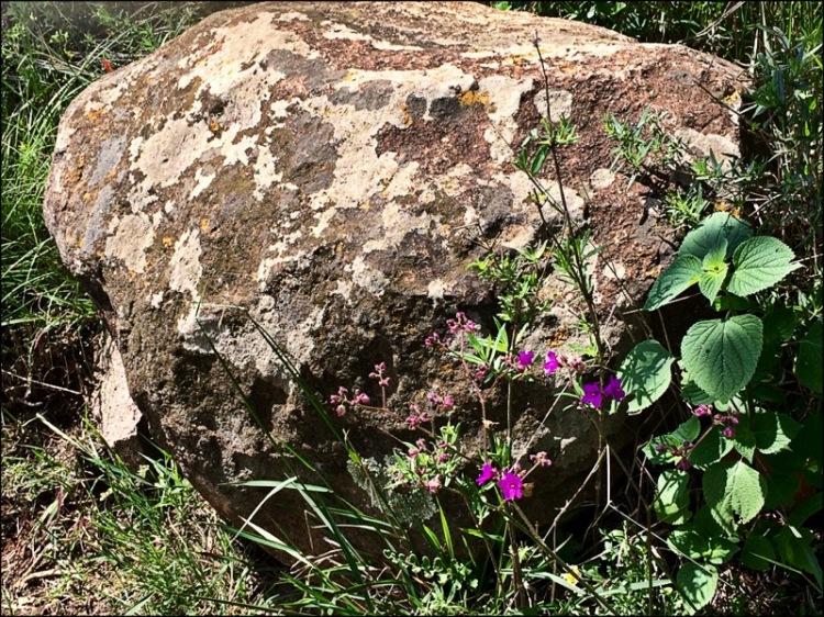 Big rock in Mexico