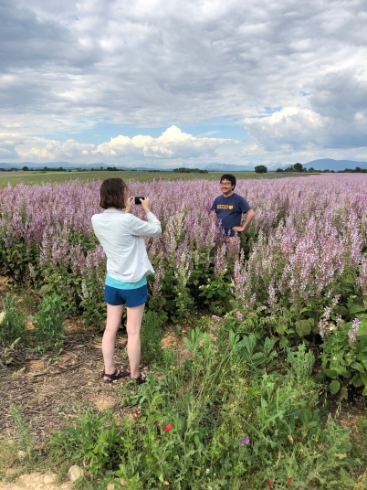 My Daughter her Husband in a Lavender Field