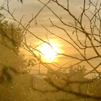 The Last Sunrise 2018