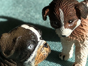 Even ceramic dogs have a light in their eyes.