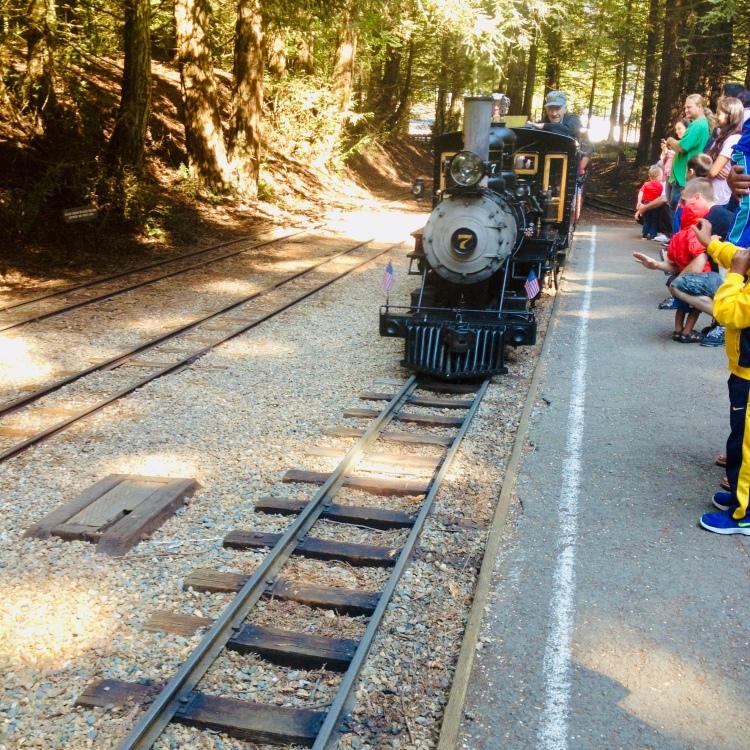 Redwood Railway