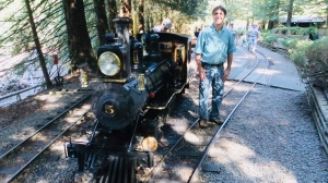 Redwood train
