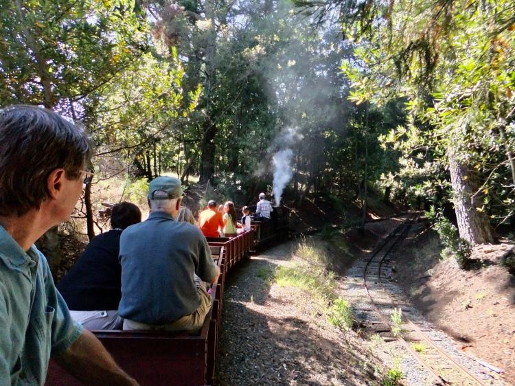 Redwood Train
