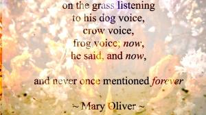 Mary Oliver God of Dort