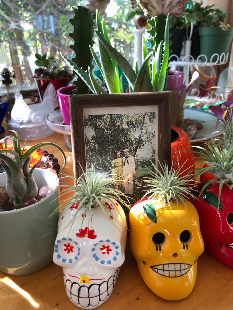 Ancestor Garden