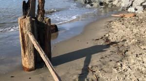 Driftwood Sundial