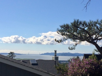 Chimney and SF Bay