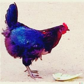 My Ble Hen