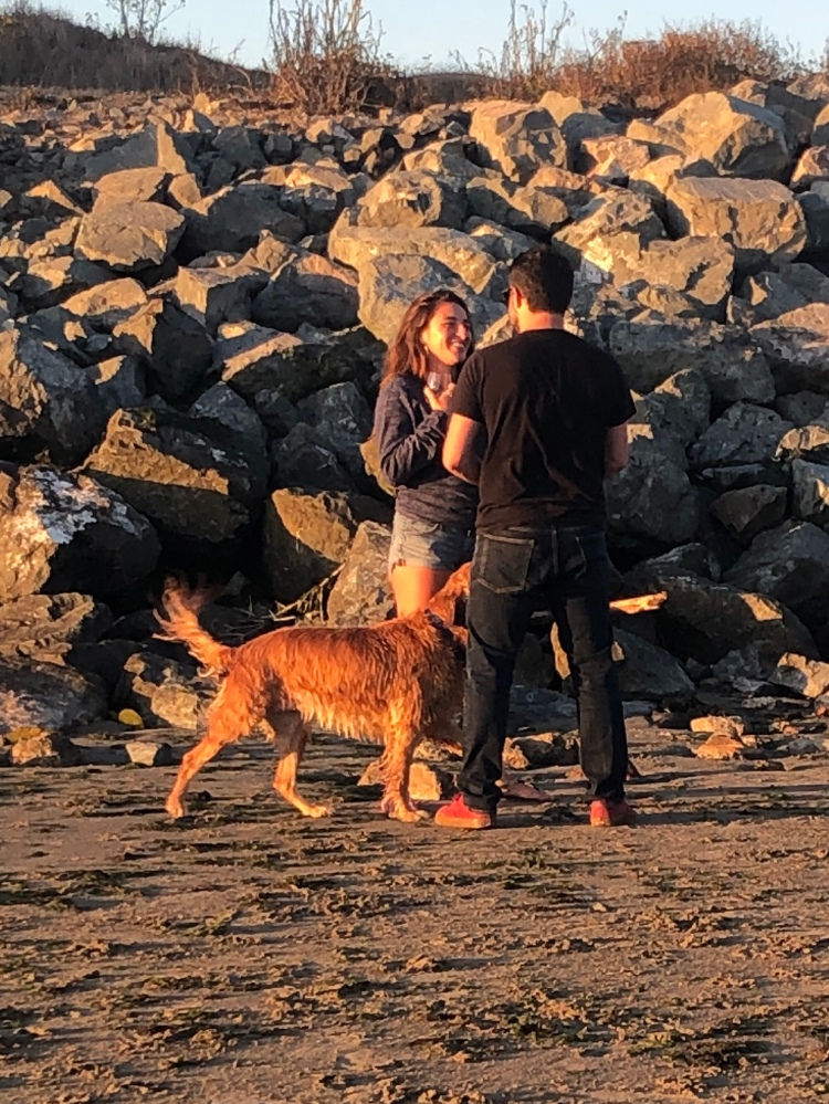 Dog and couple