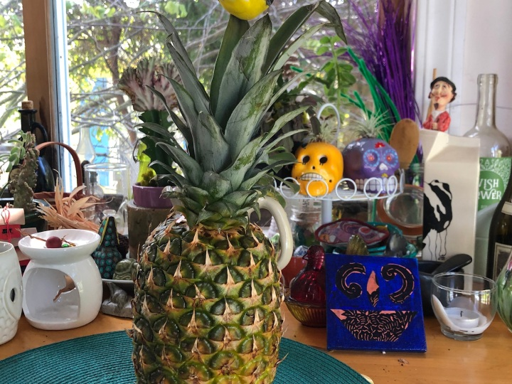 Pineapple in house