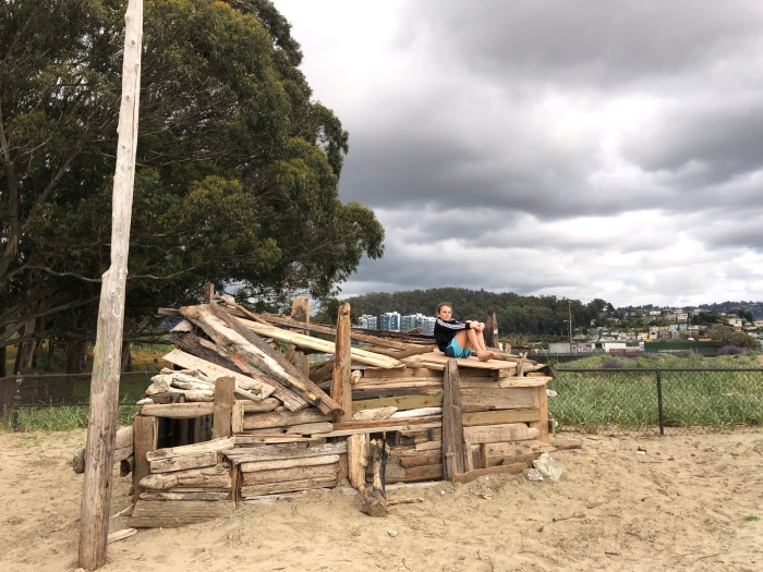 Driftwood shack
