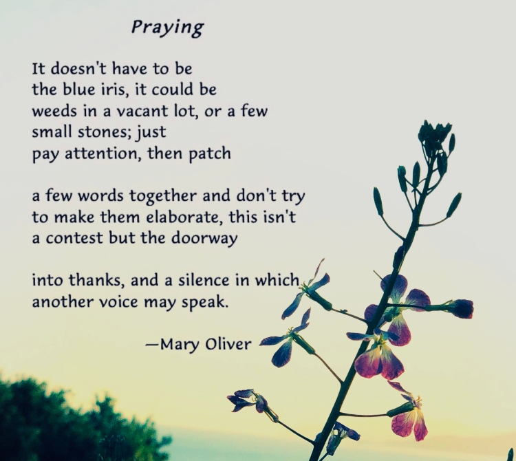 Words of Mary Oliver