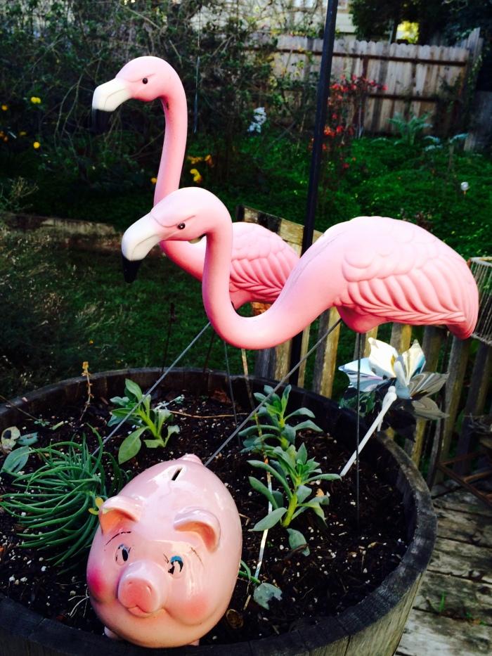 Pink flamingos and pig
