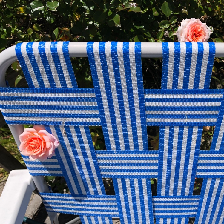 Chair and Roses