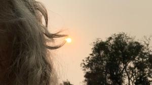 Sun and hair